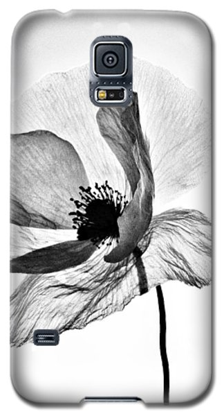 Galaxy S5 Case featuring the photograph Standing Alone by Marianna Mills