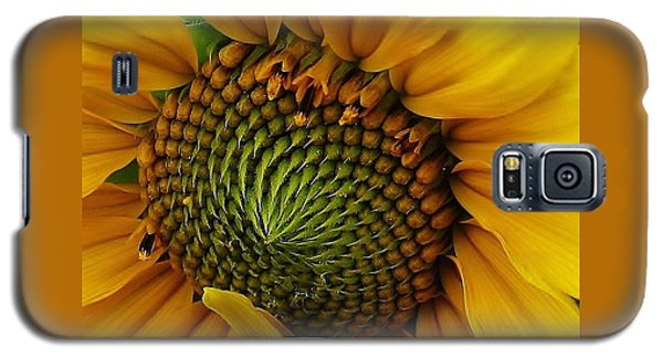 Galaxy S5 Case featuring the photograph Sunflower Close Up by Bruce Bley
