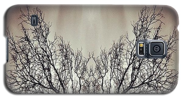 Edit Galaxy S5 Case - #symmetry #symmetrical #mirror by James Peto