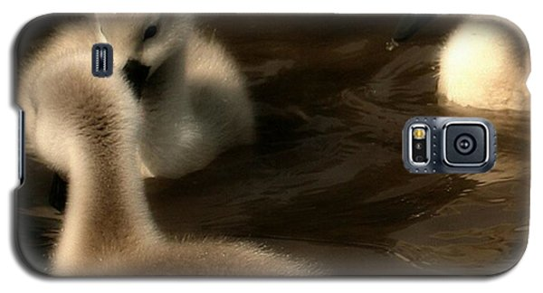 They Called You An Ugly What Galaxy S5 Case by Isabella F Abbie Shores FRSA