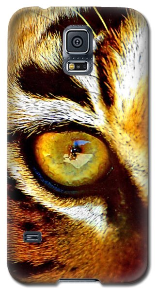 Tigers Eye Galaxy S5 Case