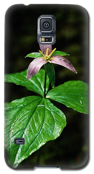 Galaxy S5 Case featuring the photograph Wet Trillium by Cathie Douglas