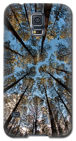 Whispering Pines Galaxy S5 Case by Dan Wells