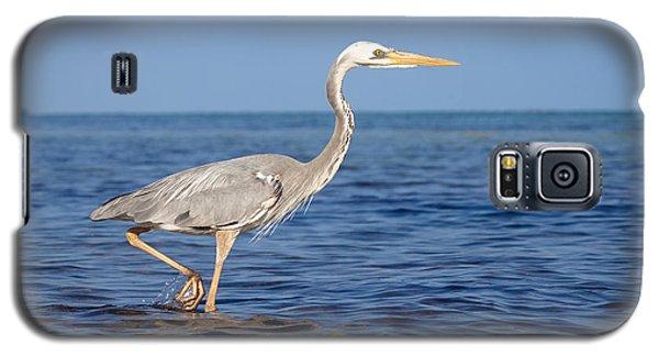 Wurdemann's Heron Galaxy S5 Case by Scott Meyer
