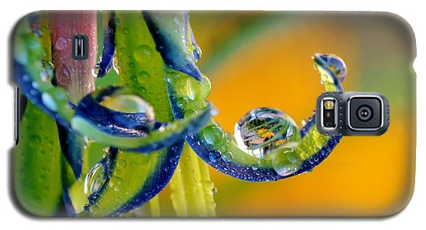 Billbergia Nutans Queen's Tears Galaxy S5 Case by Werner Lehmann