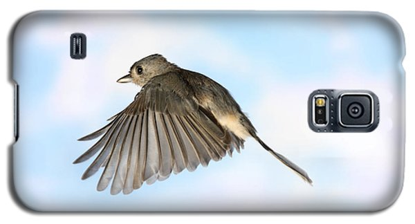 Tufted Titmouse In Flight Galaxy S5 Case
