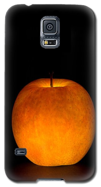 Apple Galaxy S5 Case by Michael Dorn