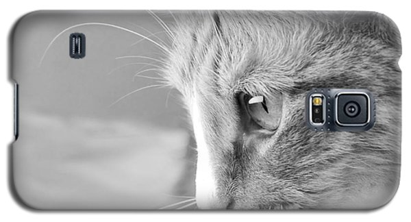 Galaxy S5 Case featuring the photograph Flitwick The Cat by Jeannette Hunt