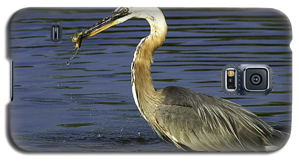 Galaxy S5 Case featuring the photograph 2 For 1 Dinner Special by Clayton Bruster