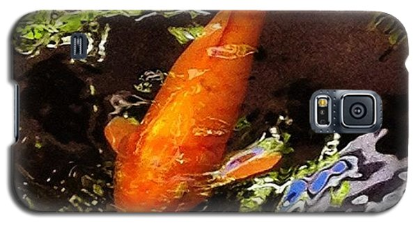 Orange Galaxy S5 Case - Koi by Darice Machel McGuire