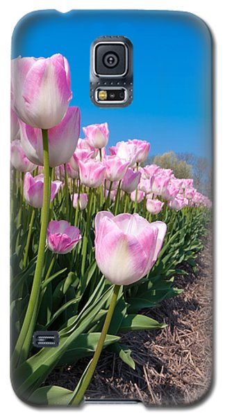 Galaxy S5 Case featuring the photograph Pink Tulips by Hans Engbers