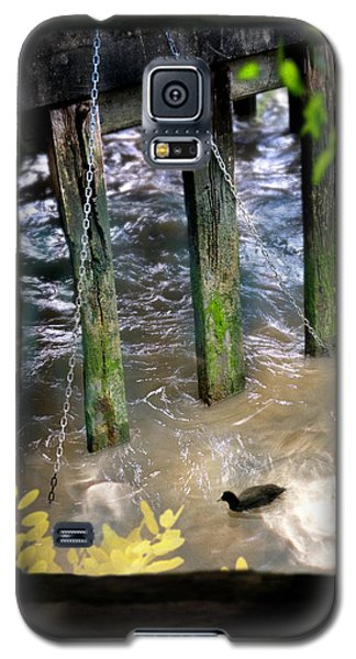 Galaxy S5 Case featuring the photograph Thames Coot by Richard Piper