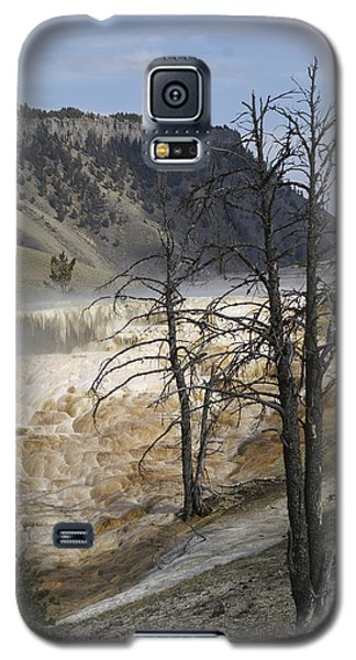 Yellowstone Nat'l Park Galaxy S5 Case