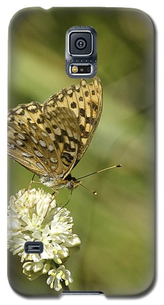 Galaxy S5 Case featuring the photograph Butterfly by Betty Depee