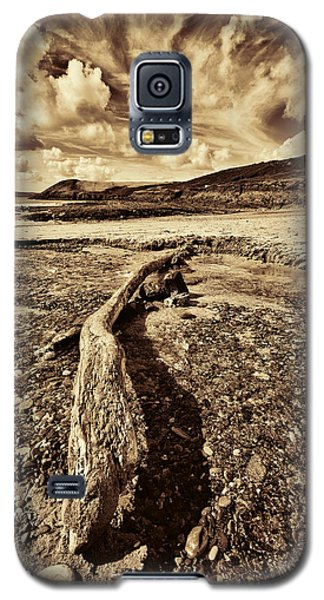 Galaxy S5 Case featuring the photograph Driftwood by Steve Purnell