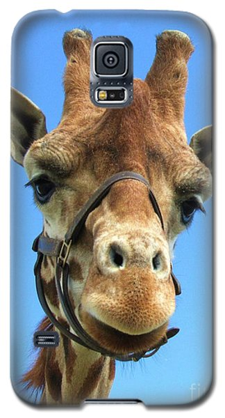 Galaxy S5 Case featuring the photograph Giraffe Close Up  by Jeepee Aero
