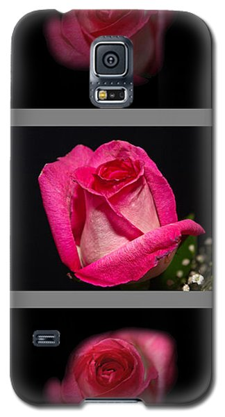 3 Little Roses Galaxy S5 Case