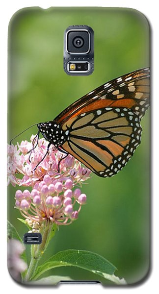 Galaxy S5 Case featuring the photograph Monarch Butterfly by Heidi Poulin