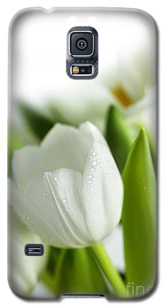 White Tulips Galaxy S5 Case by Nailia Schwarz