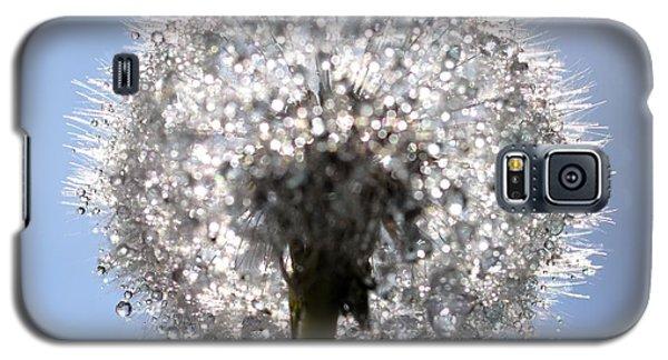 Galaxy S5 Case featuring the photograph Fleur De Cristal by Sylvie Leandre