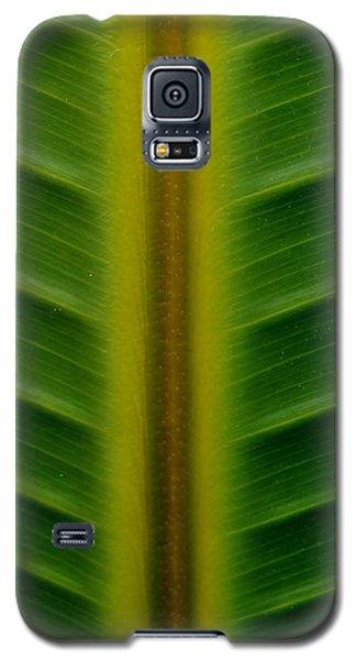 Wild Banana Leaf Galaxy S5 Case by Werner Lehmann