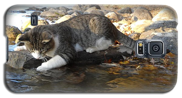 A Cat Goes Fishing Galaxy S5 Case