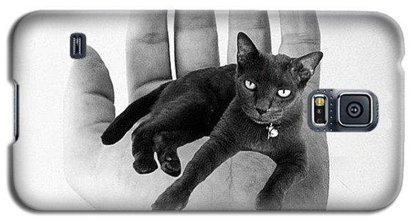 A Cat In The Hand Is Worth Galaxy S5 Case by Cameron Bentley