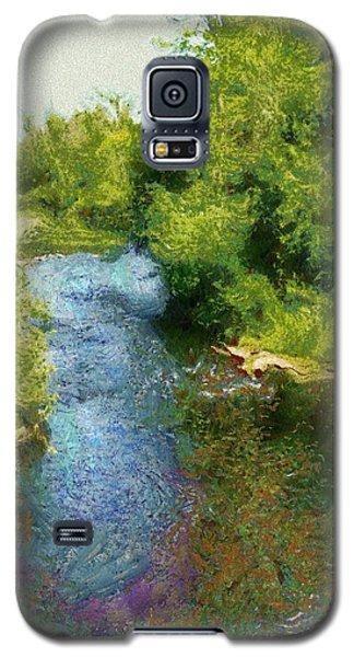 Galaxy S5 Case featuring the photograph A Creek Runs Through It by Mario Carini