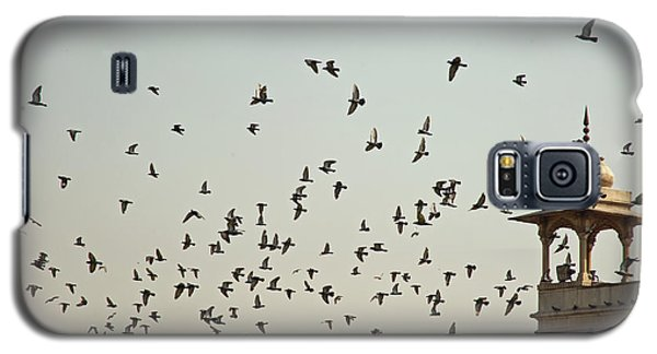 Galaxy S5 Case featuring the photograph A Flock Of Pigeons Crowding One Of The Structures On Top Of The Red Fort by Ashish Agarwal