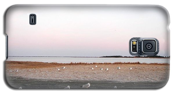 Galaxy S5 Case featuring the photograph A Gathering On Rehoboth Bay by Pamela Hyde Wilson