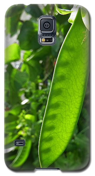 Galaxy S5 Case featuring the photograph A Green Womb by Steve Taylor