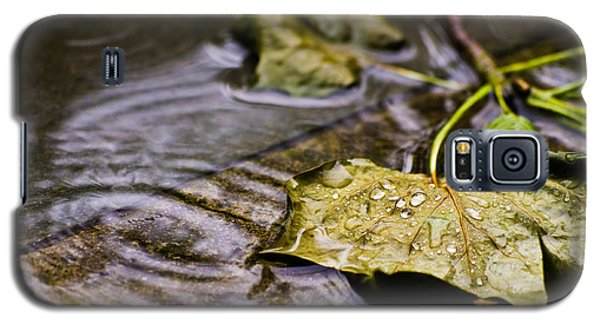 A Leaf In The Rain Galaxy S5 Case
