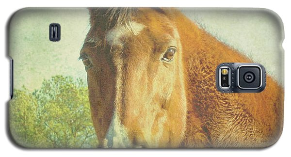 Galaxy S5 Case featuring the photograph A Loving Soul by Robin Dickinson