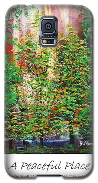 A Peaceful Place Poster Galaxy S5 Case