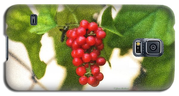 Galaxy S5 Case featuring the photograph A Red Cluster by Joan Bertucci