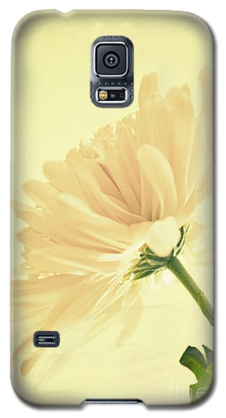 Galaxy S5 Case featuring the photograph A Revelation by Robin Dickinson