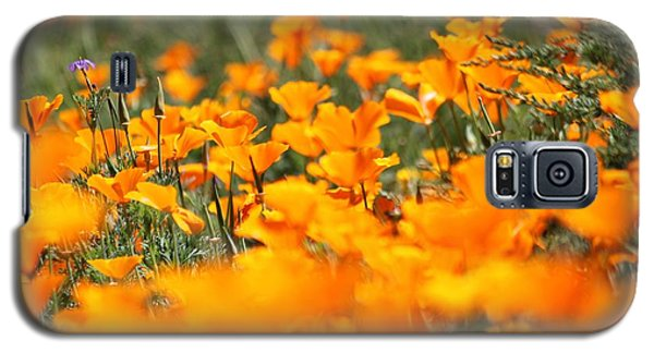 Galaxy S5 Case featuring the photograph A River Of Poppies  by Amy Gallagher