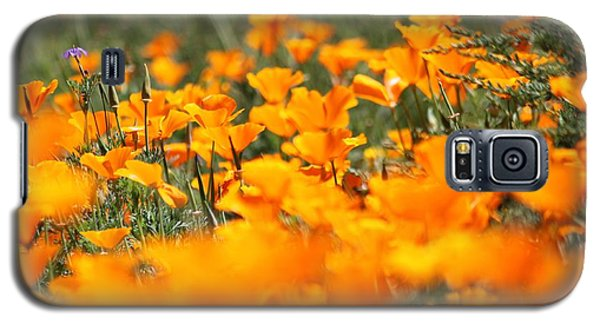 A River Of Poppies  Galaxy S5 Case