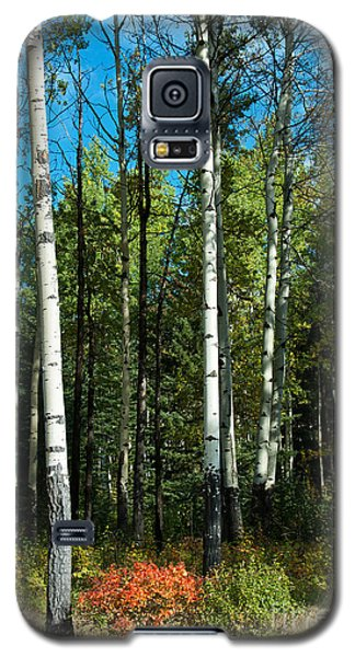Galaxy S5 Case featuring the photograph A Touch Of Autumn by Bob and Nancy Kendrick