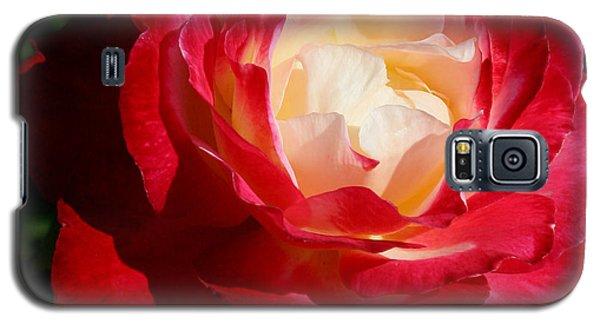 A Unique Rose Galaxy S5 Case