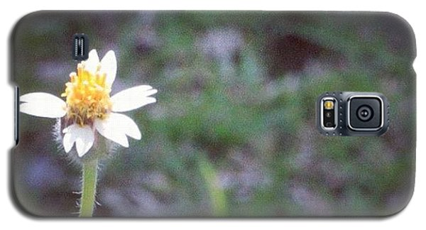 Political Galaxy S5 Case - A Wild Flower, Grows Almost Everywhere by Ahmed Oujan