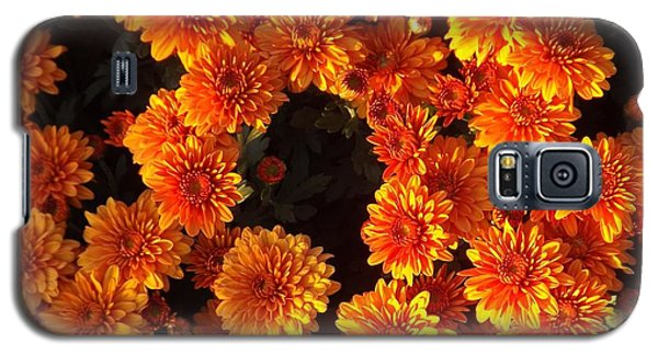Galaxy S5 Case featuring the photograph Ablaze by Elizabeth Sullivan
