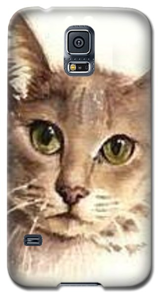 Galaxy S5 Case featuring the painting Abyssinian Cat by Sandra Phryce-Jones
