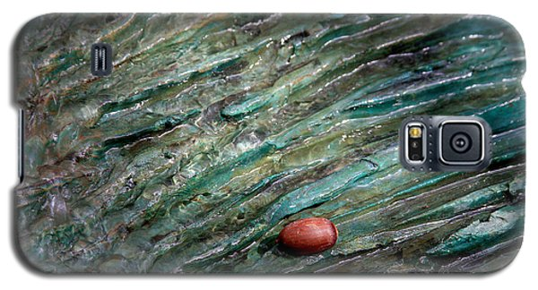 Acorn Fountain Galaxy S5 Case by Jerry Bunger