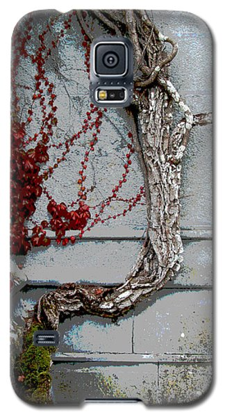 Galaxy S5 Case featuring the photograph Adare Ivy by Charlie and Norma Brock