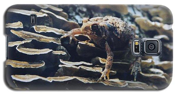 Adventurous Toad 2 Galaxy S5 Case by Gerald Strine