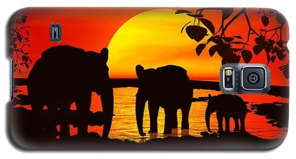 Africa Galaxy S5 Case by Robert Orinski