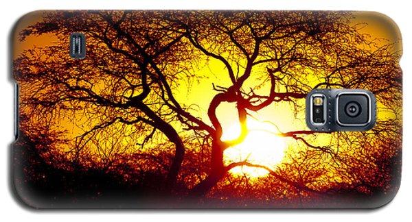 African Tree Galaxy S5 Case