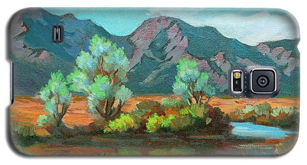 After The Rain Galaxy S5 Case by Diane McClary