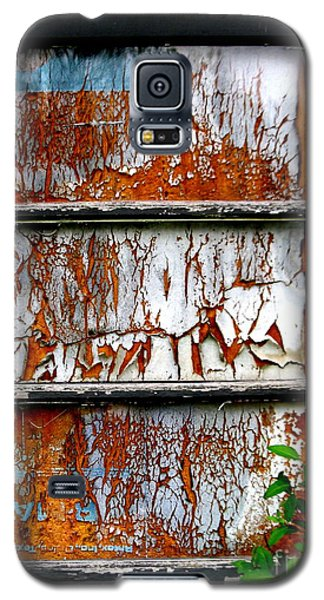 Aged Door Galaxy S5 Case by Amy Sorrell